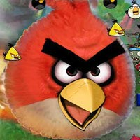Angry Birds And Zombies